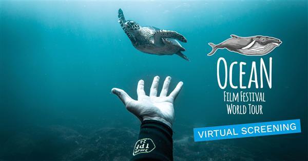 Ocean Film Festival - Brighton 2021