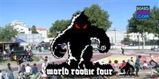 World Rookie Tour Skate Finals Livestream 2019